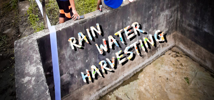 5 Steps to Install a Rainwater Harvester
