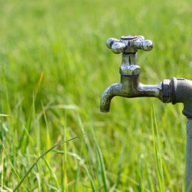 Ever Heard of Green Plumbing?