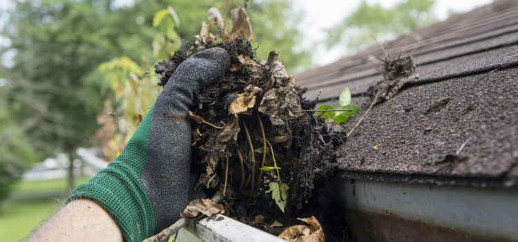 Reasons Why Hiring Professionals For Gutter Cleaning Is a Smart Decision
